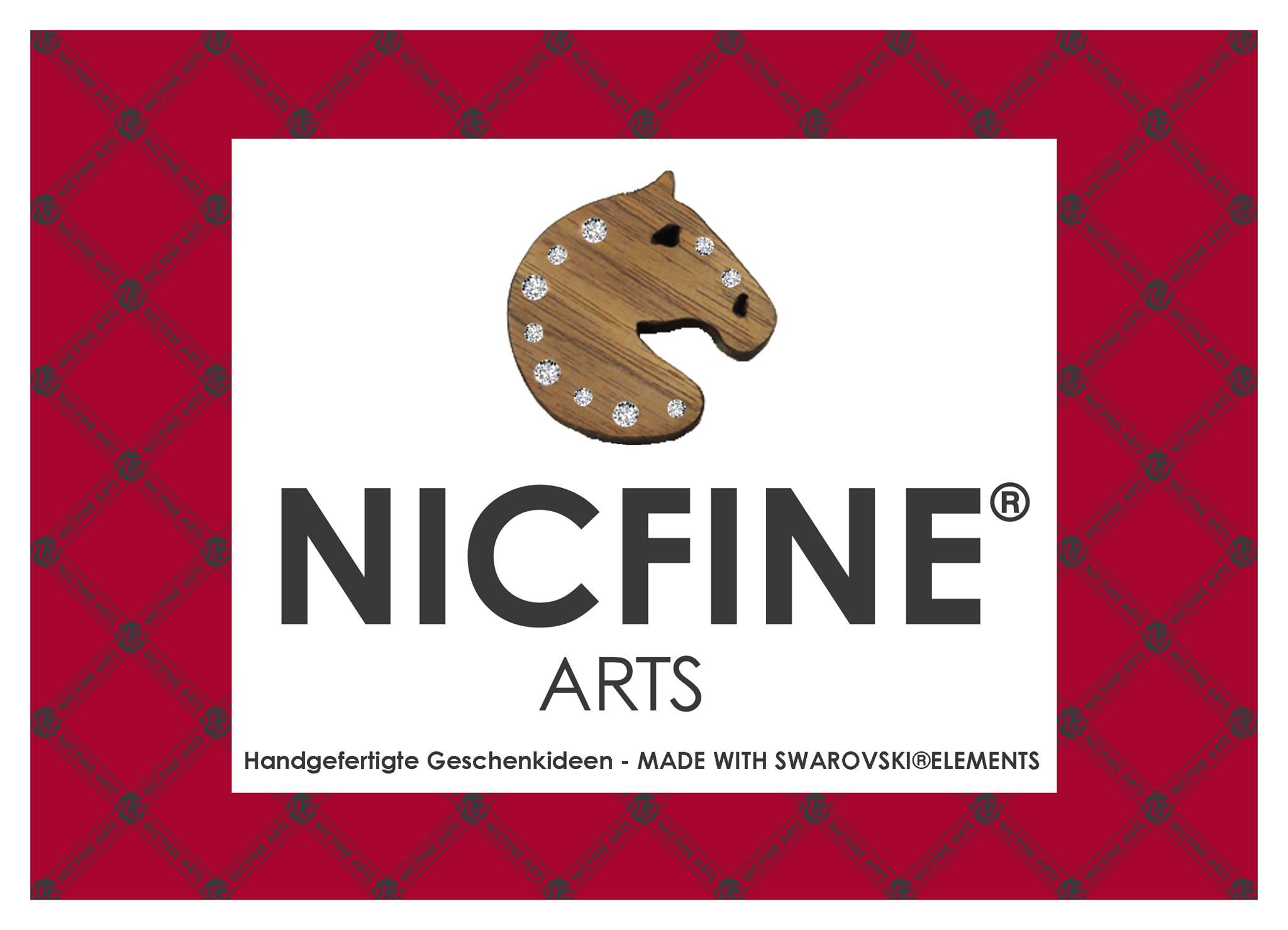 logo_NICFINE
